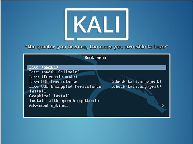 dual-boot-kali-linux-usb-live