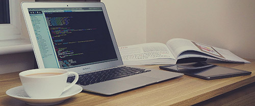 belajar web programming otodidak